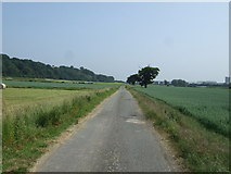 SK2122 : National Cycle Route 54 by JThomas