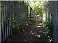 TQ0273 : Footpath, Staines Moor by Alan Hunt