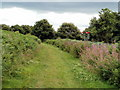 ST2986 : Semaphore signals near Park Junction, Newport by Jaggery