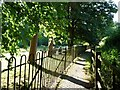 TQ8927 : Bridleway alongside Wittersham Cemetery by Christine Johnstone