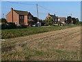 TF5421 : Houses along New Roman Bank by Mat Fascione