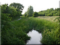 SK4645 : Nottingham Canal near Eastwood by Alan Murray-Rust