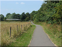 SU9948 : Path, Shalford Park by Alan Hunt