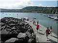 SN3960 : Perfect for a cruise to see the dolphins, New Quay/Ceinewydd by Steve  Fareham