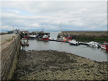 NH7867 : Cromarty harbour by Jennifer Jones