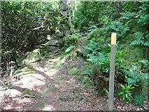 SE0023 : Hebden Royd Path 114 (NE) in Deacon Hill Wood by Humphrey Bolton