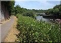 ST6172 : River Avon Trail / Monarch's Way by Derek Harper