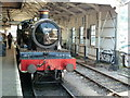 SX8851 : Kingswear Station - Lydham Manor by Chris Allen