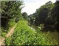 ST6370 : River Avon by Derek Harper
