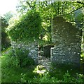 SX0888 : Ruined building near Trewitten by Maurice D Budden