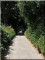 TQ1208 : Steep Lane by Simon Carey