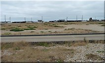 TR0916 : Dungeness, east of the nuclear power station by Christine Johnstone