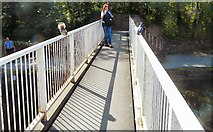 SJ9398 : A squirrel, a human and a pigeon by the Ashton Canal by Gerald England