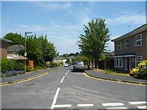 TQ2160 : Epsom:  Tintagel Close by Dr Neil Clifton
