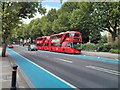 TQ2977 : Boris Buses on Grosvenor Road Pimlico by PAUL FARMER