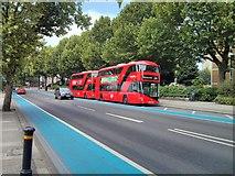 TQ2977 : Boris Buses on Grosvenor Road Pimlico by PAUL FARMER