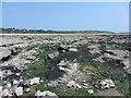 SS8476 : On Black Rocks, near Newton by Gareth James