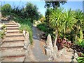 SZ5476 : Ventnor Botanic Garden, Steps to South African Terrace by David Dixon