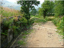SE0125 : Stake Lane by Humphrey Bolton