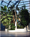 TQ2989 : Inside the Palm Court, Alexandra Palace by Julian Osley