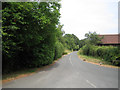 SU8073 : West end of Broadcommon Lane, Hurst by Robin Stott