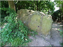 TQ7560 : White Horse Stone, near Blue Bell Hill by Chris Whippet