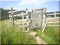NO1492 : Wicket gate on Clunie Water footpath by Stanley Howe