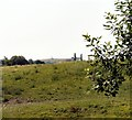 SJ9694 : Godley Green by Gerald England
