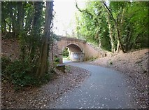 SU4726 : Winchester, disused railway bridge by Mike Faherty