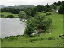 NY3404 : Loughrigg Tarn from the south east by Peter S