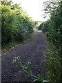 SP7021 : Bridleway to Oak Tree Farm by Philip Jeffrey
