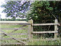 TM3487 : Footpath off Lane near Manor Farm by Adrian Cable