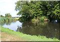 TM3487 : Pond near Manor Farm by Adrian Cable