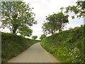 SX3862 : Leigh Lane by Derek Harper