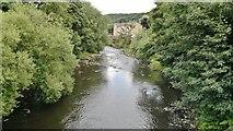 SE1415 : River Colne by Chris Morgan