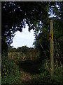 TM3283 : Footpath off St.Nicholas by Adrian Cable
