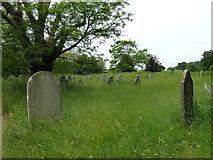 SU1012 : St James, Alderholt: churchyard (6) by Basher Eyre