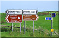 C9443 : Directional signs at the Giant's Causeway by Rossographer