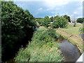 SO0864 : Grassy islet in the Ithon north of Llanbadarn Fawr bridge by Jaggery