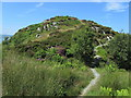 NR7693 : Approaching Castle Dounie by Chris Heaton