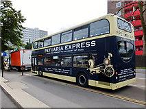 TA0828 : Petuaria Express by Bernard Sharp