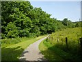 NS4176 : Path to Whiteford Crescent by Lairich Rig