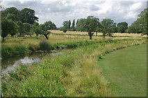 SP2556 : River Dene, Charlecote Park by Stephen McKay