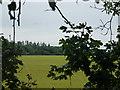 SK9830 : Flax field by Bob Harvey