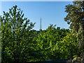 TQ2990 : Communications Tower, Alexandra Palace, London N22 by Christine Matthews