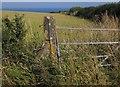 SX9050 : Gate and post near The Daymark by Derek Harper