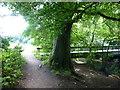 SJ8283 : Path to styal passes farm access bridge over the River Bollin by Raymond Knapman