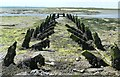 SU7802 : Failed dam remnants at Cobnor Point by Rob Farrow