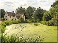 TM0733 : Willy Lott's House by David Dixon