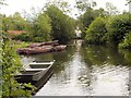 TM0733 : River Stour by David Dixon